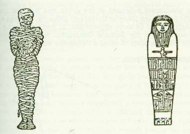 egyptian mummification essay The ancient egyptian had a elaborate set of burial system called mummificationthis burial system allows the ancient egyptian to have a successful afterlifethe.